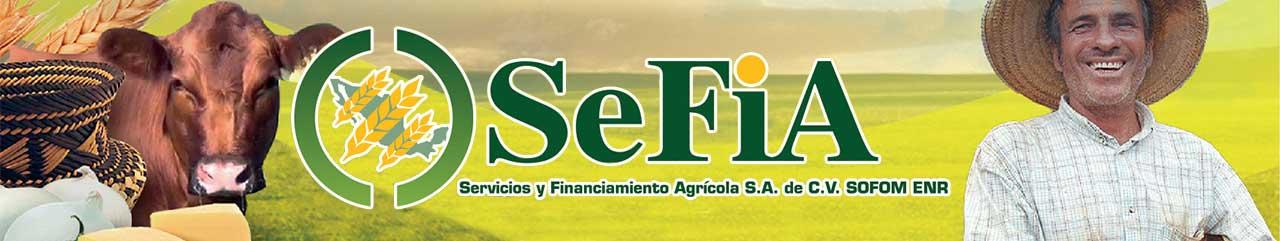 Financiamiento SEFIA
